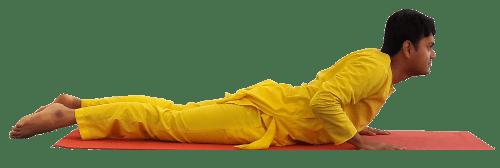 Yoga Practitioner in Cobra Pose