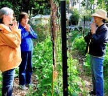 Devotees Praying in Garden