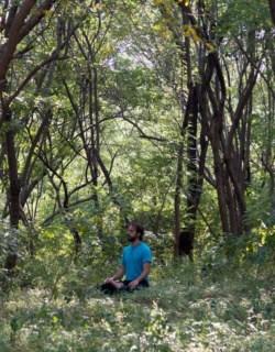 Hezequiel Lotus Pose Woods